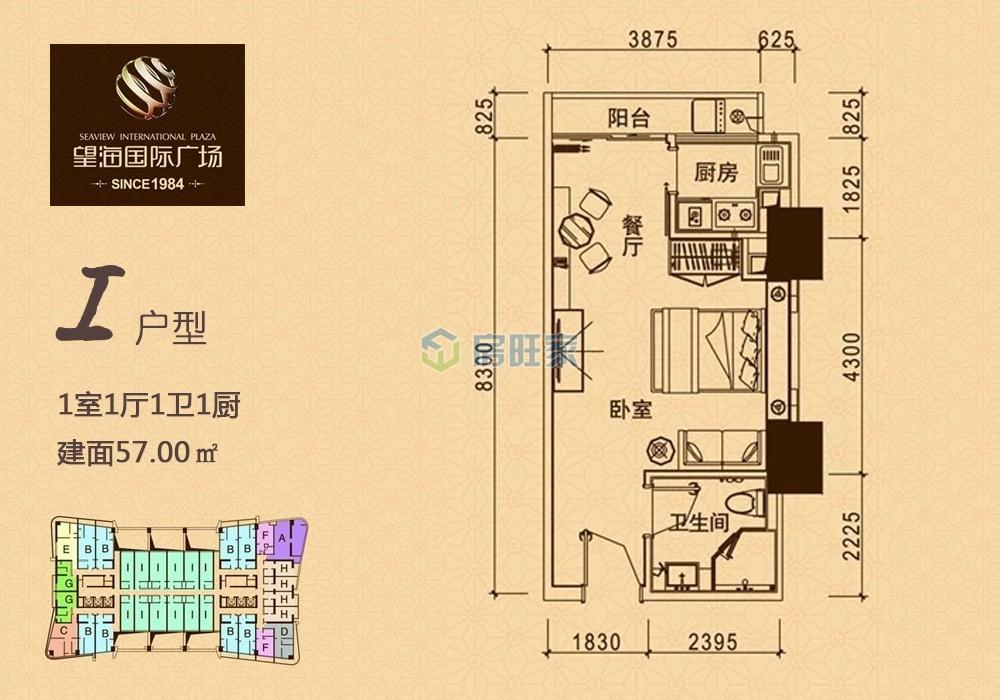 望海国际精装公寓户型图