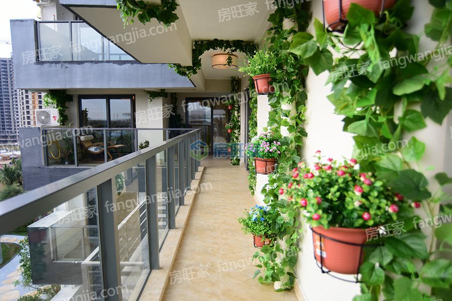 金地海南自在城样板间:阳台