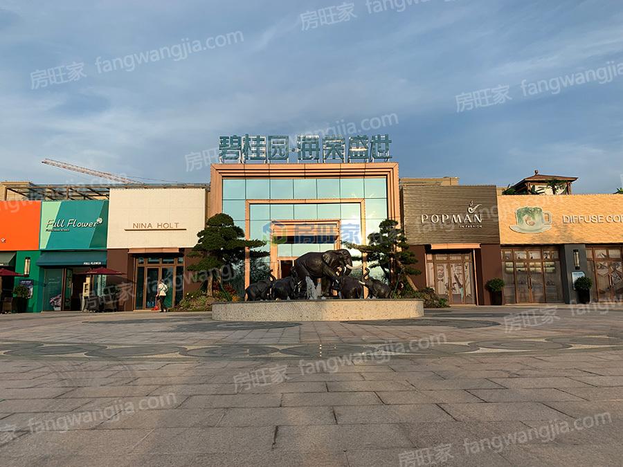 碧桂园海棠盛世入口实景图
