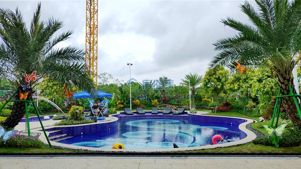 碧桂园十里繁花小区泳池实景