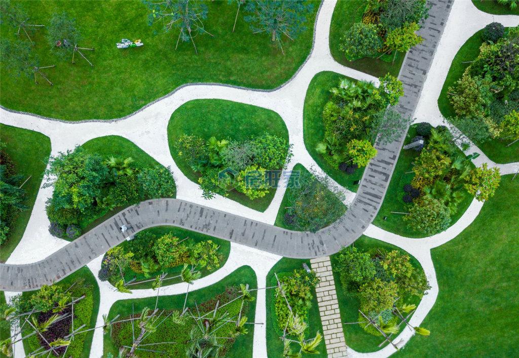 金地海南自在城绿化实景图